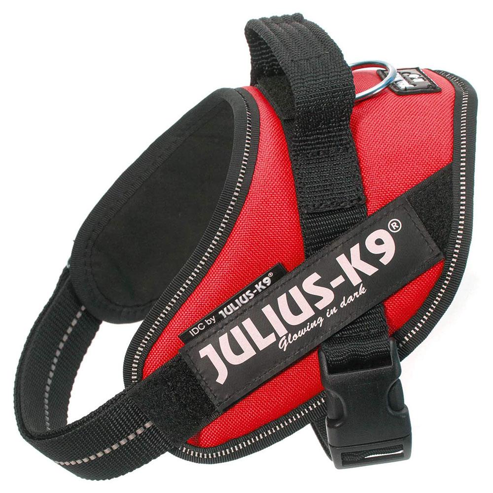 meilleur-Julius-K9-Harnais-pour-Chien-Taille-Mini-topifive