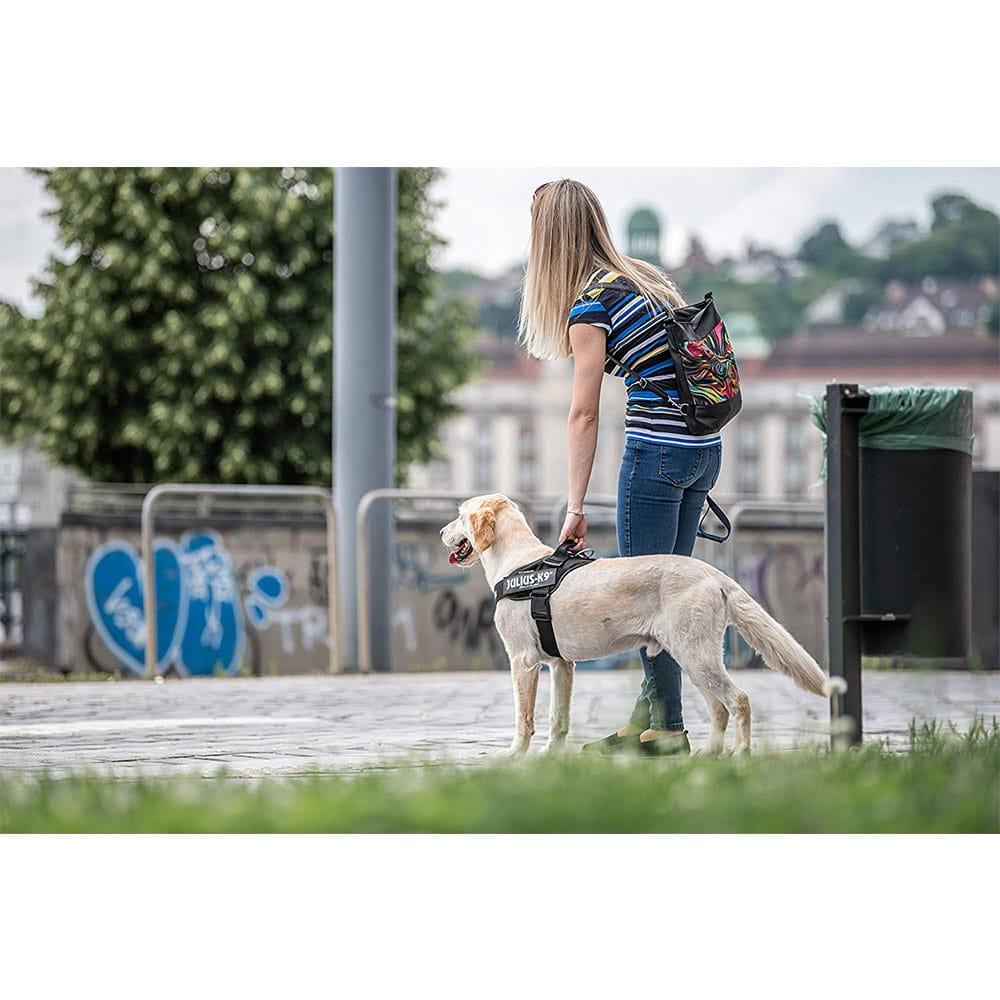 meilleur-Julius-K9-IDC-Harnais-pour-chien-topifive
